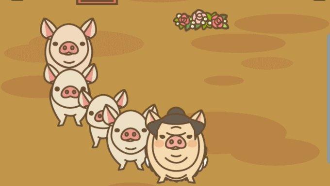 ランド mix 養豚 レース 場
