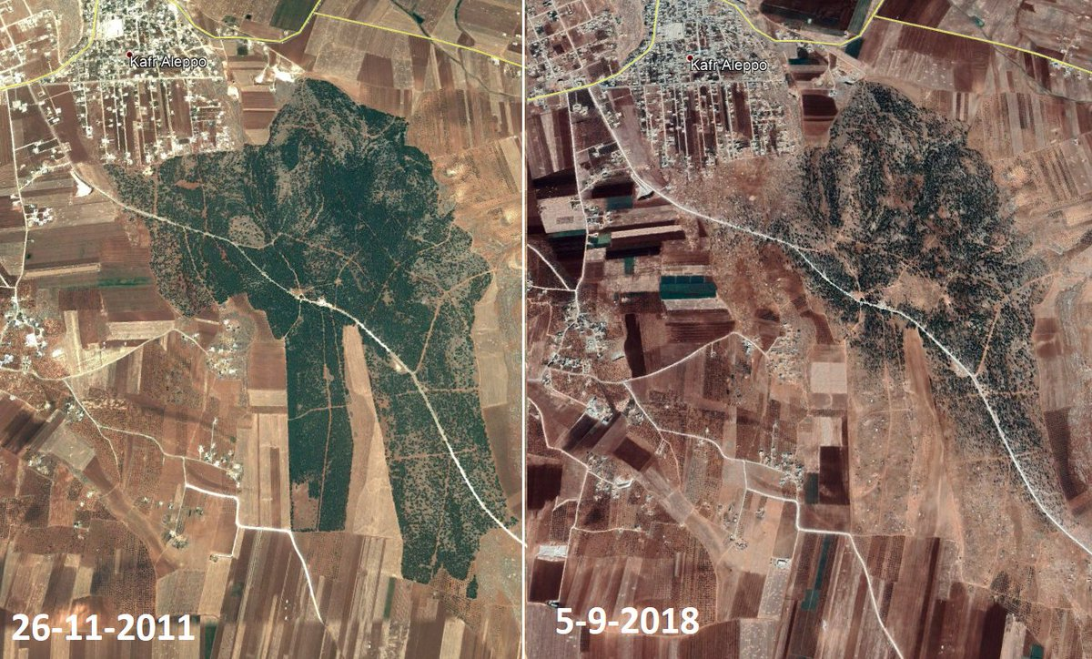 Civilian coping strategies in #Syria are driving #deforestation - blame the conflict, not the people.
