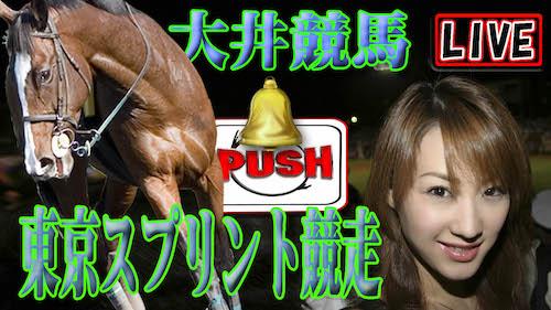 大井 競馬 ライブ