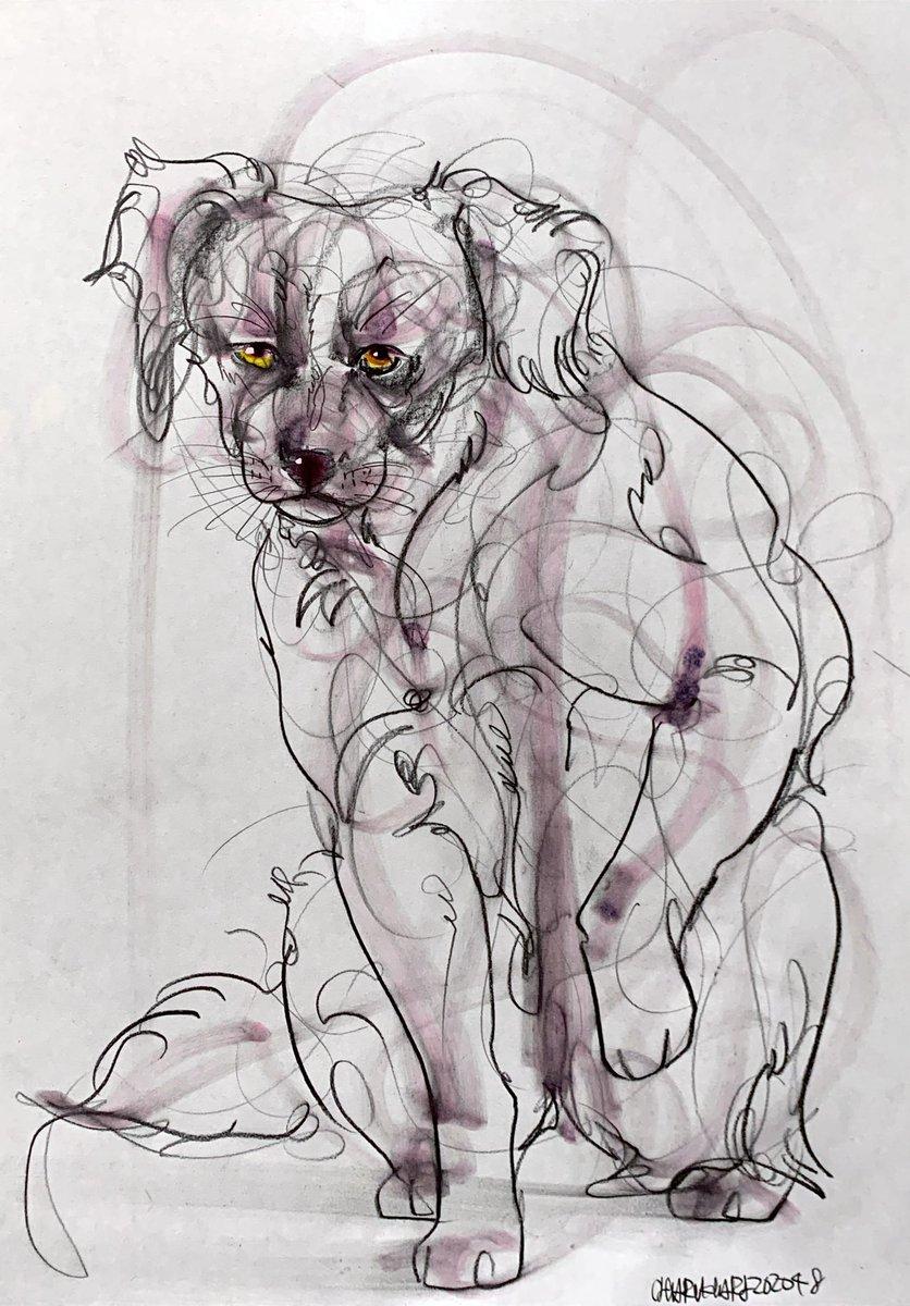 本画の油彩と日々の筋トレの為に毎日描いている #5分間ドローイング  #メルカリ  #mix #イタリアングレーハウンド #黒ねこ  #cat #ネコ     #artcentral   #3331アートフェア
