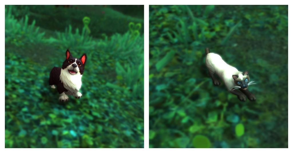 Vous êtes plus #TeamCat ou #TeamDog ?  Partagez une image de votre animal préféré, en jeu ou dans la vraie vie !