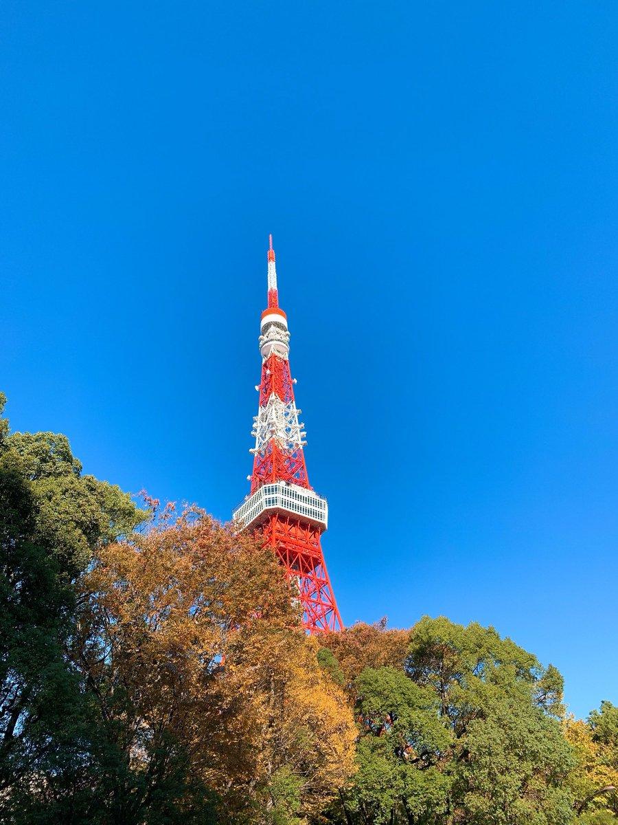 こんばんわ  あまり外出ができないのでこんな時は、昔の写真整理  こんなのが出てきたので、 外の写真はこんな時にいいなぁと感じました どんどん出しましょう笑  こういう時VRとか動画とか人気出そうですね  #東京タワー #コロナで気が滅入るからみんなの動画で旅行しようぜ  #空 #景色pic.twitter.com/6hHAtZ9Is8