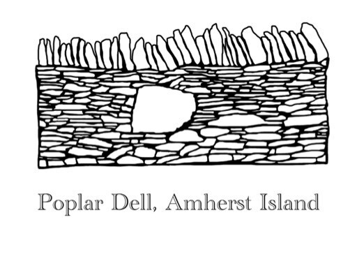 Day 19 is a piece of the old @poplar_dell wall. Made with island found limestone. Restored last fall by @drystonecanada #quarantineart #stayhome #drystonewall #amherstisland https://instagr.am/p/B-uE0ivALZU/ pic.twitter.com/zb9hmzI8p8