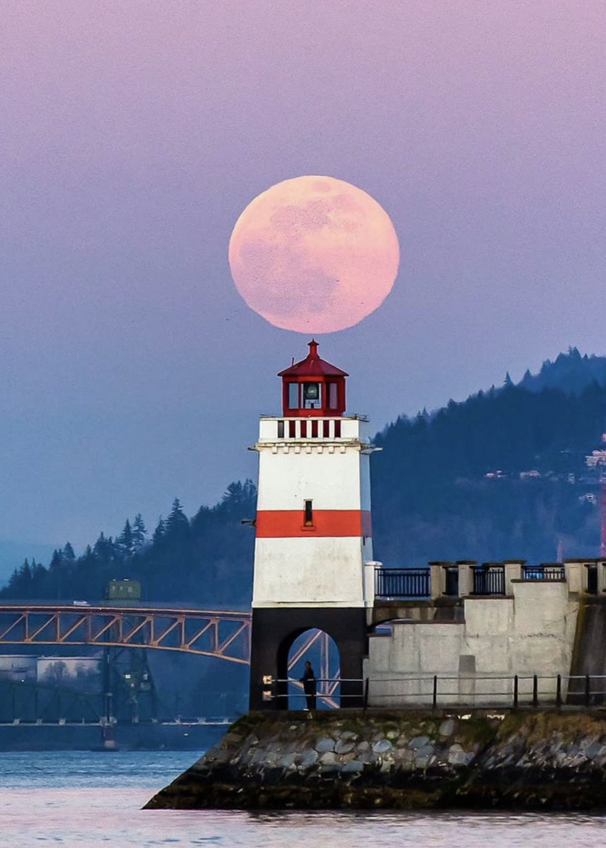 There was a stunning pink moon seen in Vancouver last night -  VanexusPhoto #Canada #Vancouver #BritishColumbia #BC #StanleyParkpic.twitter.com/dMGIc9ttxm