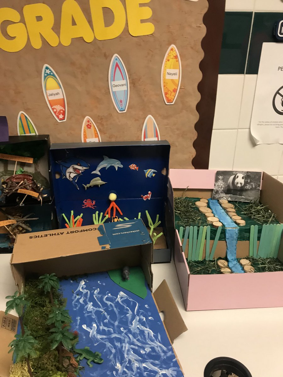 Here are some amazing projects done by our 3rd graders prior to our unscheduled break. They were rocking creating Ecosystems!!!!#awesome #BLES#PWCS pic.twitter.com/Q5ePUv3yEx