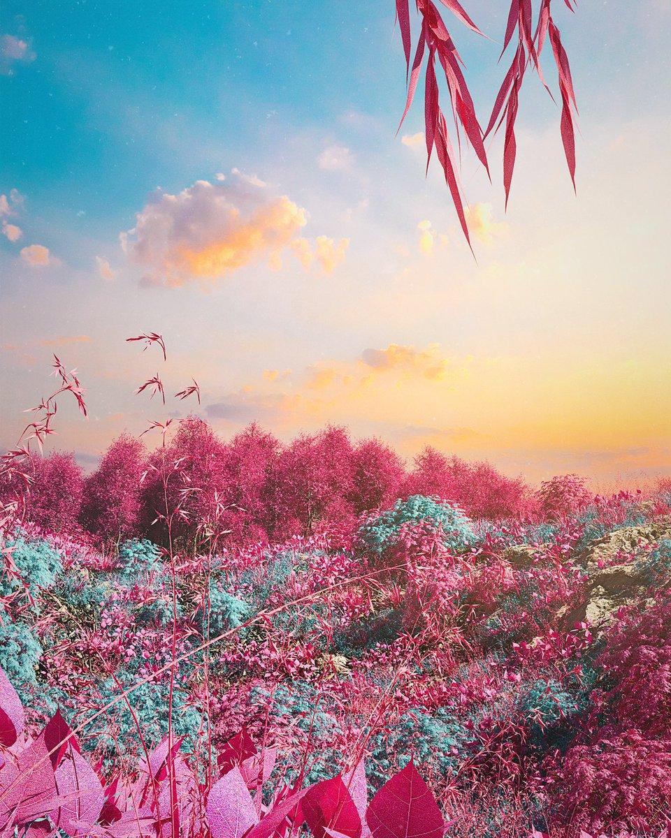 RENDER 446 . Done w| @maxon3d & @OTOY postproduction in @Photoshop  . [ @AdobeES @Adobe ] . #render #GraphicDesign #digitalart #cinema4d #octanerender #design #3dart #cgi #art #scifi #stampdaily
