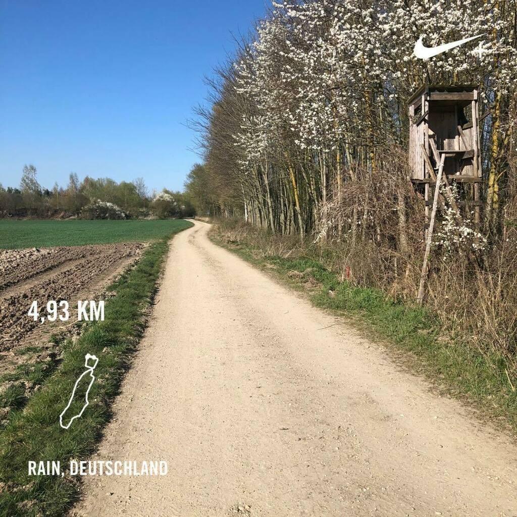 (Nearly)BackOnTheTrack-Run. Einen Versuch war es wert. Abbruch nach 2,5k  #Running #Laufen #fitness #allyoucanrun #makeitcount #instarunnner #BeatYesterday #RUN #runyourlife  #noexcuses #laufliebe #runnershoutouts #time2run #cardiorun #fitover60 #seenonm… https://instagr.am/p/B-uk6EjFguN/pic.twitter.com/sEoZC2eip1