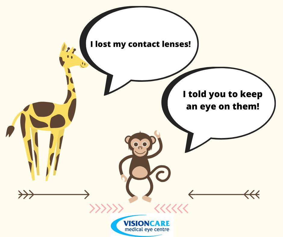 Who can relate?! Where is the strangest place you've left your glasses or contact lenses?   #Joke #Funny #ContactLenses