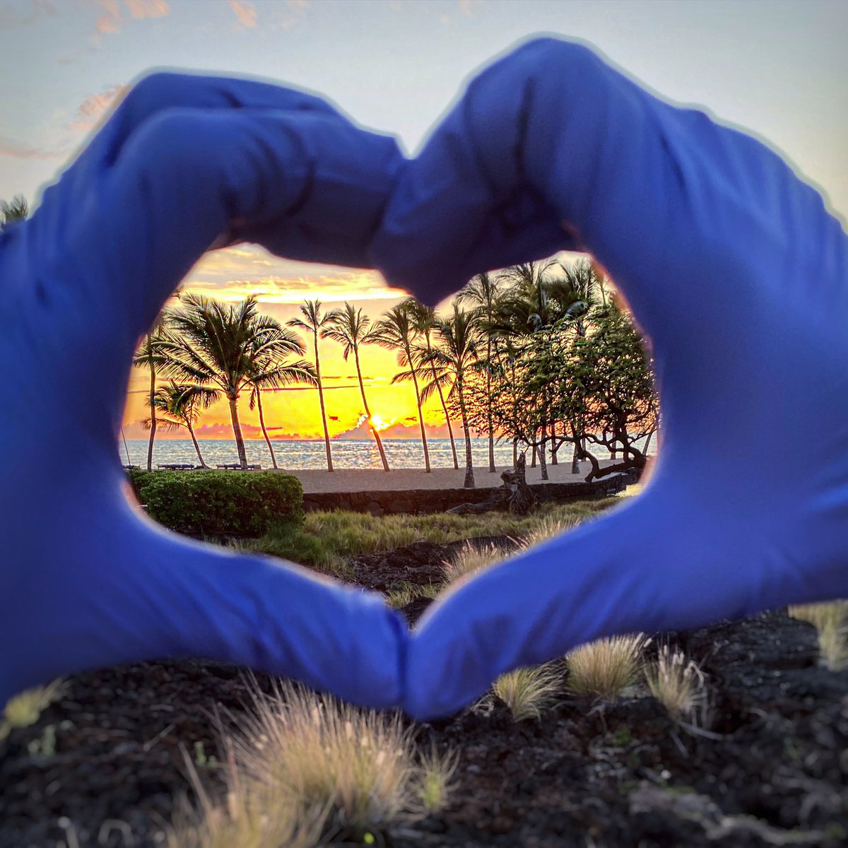 Things change, life's beauty doesn't  #sunsethearthands #outdoors #selfexile #desertedisland #oceanview #goodvibes @tacobell #hawaii #staysafe #hearthands #sharingsmilespic.twitter.com/MP5KfMzAi6 – at ʻAnaehoʻomalu Bay