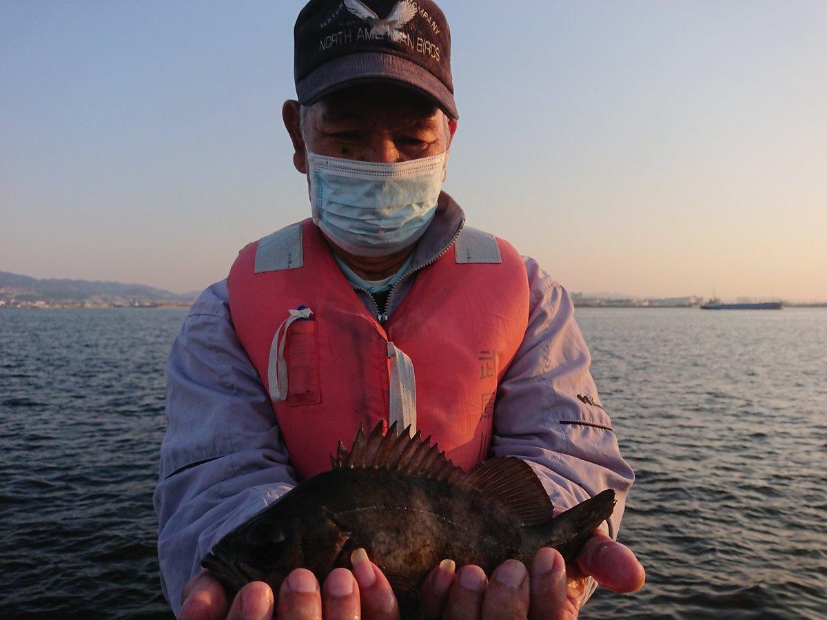 渡船 釣果 武庫川