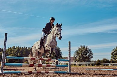 You pop Ambrosia over some low fences in the warmup arena. She's responsive and practically push-button, but you saw those antics on the line... you ride defensively, careful not to trust her too much. After a couple of jumps, you see Kris approaching, ready to take over.
