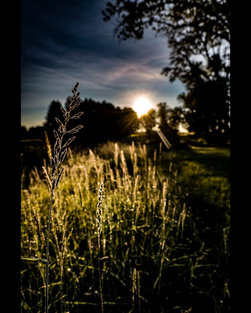 Photography by ©️ Domenico Antonio Galloro  #nature #naturephotography  #travelphotography #photography #landscapephotography  #colorphotography #camping #hiking #trees #outdoors #forest #explore #adventure #adventure #spring #landscape #travel #sunrise_and_sunsets #trekking