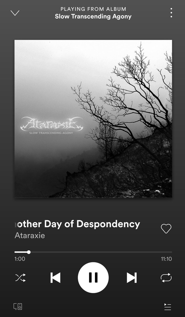 *slow heavy metal plays* I've been drawn to this type of music recently. Ataraxie is good, so is stuff like My Dying Bridepic.twitter.com/l4BAVeoSyQ