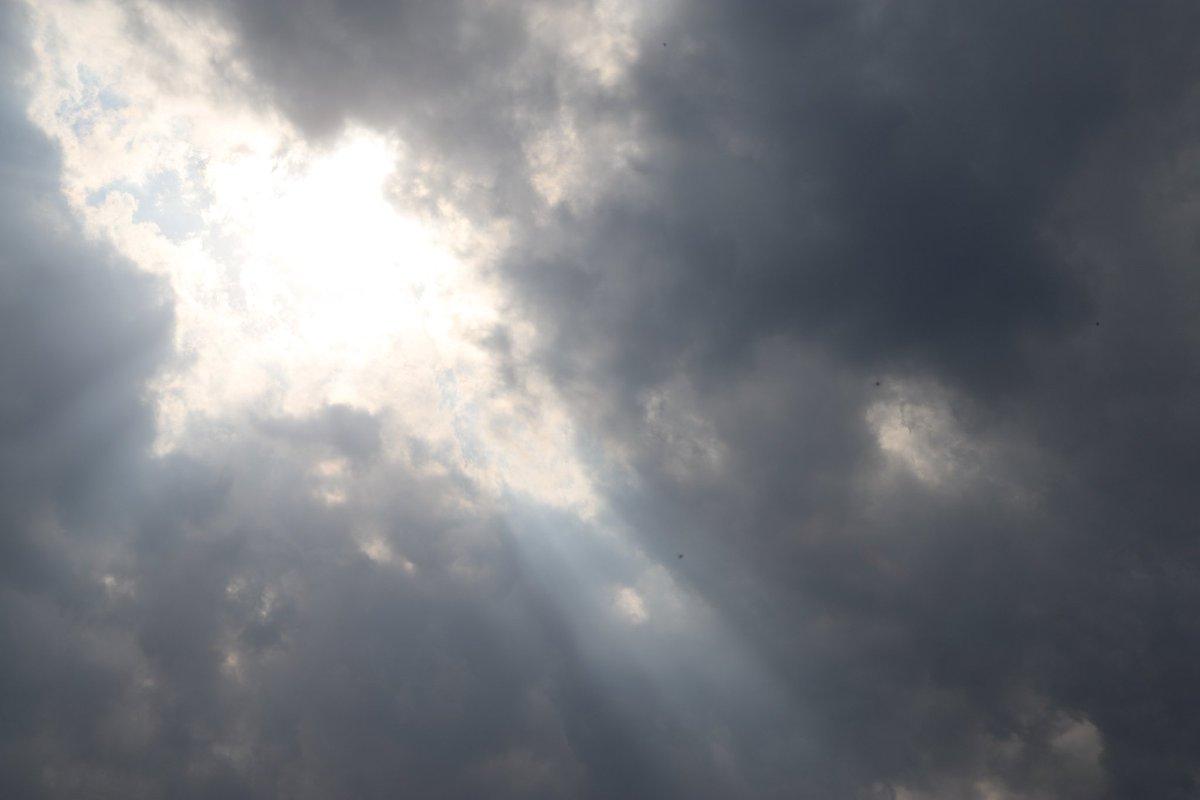 本日の釣果  天気ワリー  #6DMark2 #EF2470  #Sky #Cloud #空 #Dandelion #タンポポ  #芝公園 #浜松町 #東京 #Tokyo