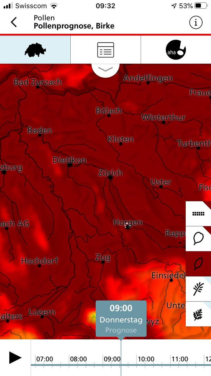 #birkenpollen #Heuschnupfen Freude herrscht. 🤧🤧🤧🤧 Birken gehören verboten. Gefällt. Verbrannt.