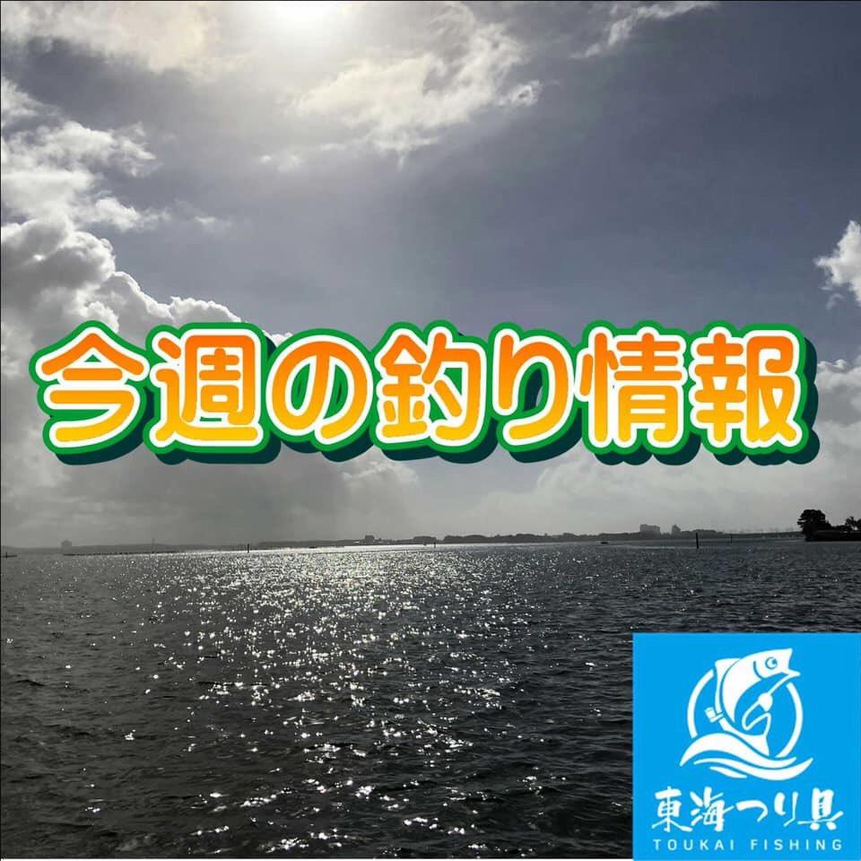 情報 浜名 湖 つり