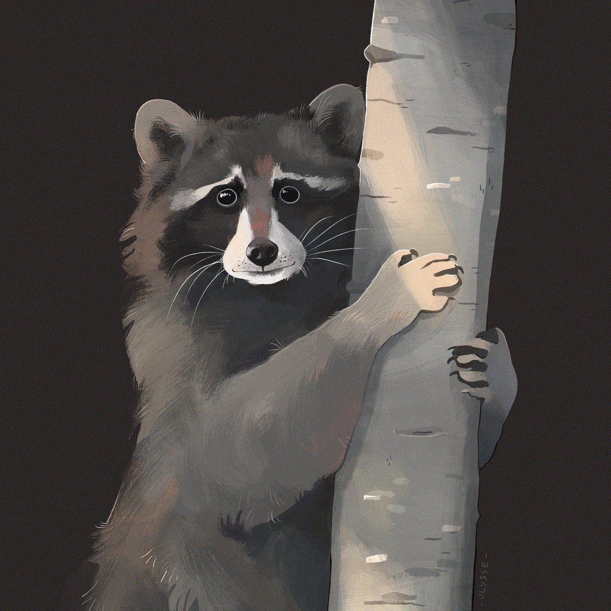 Raccoon.  #study #art #digitalpaintingpic.twitter.com/ICefKpxr54