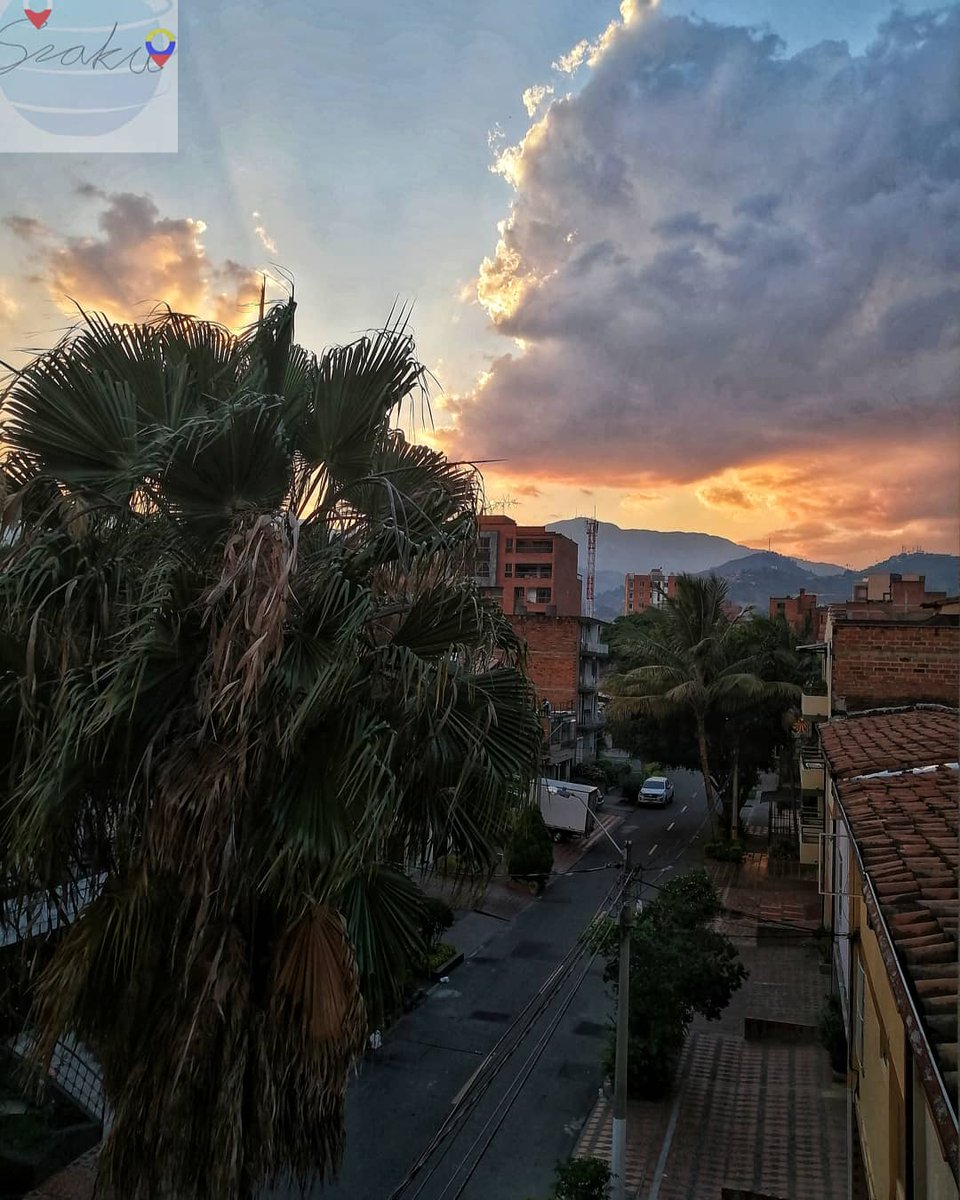 Nature is the best artist #medellín #medellin #sunset #mountains #landscape #colombia #travel #stayhome #stayhealthy #colombiatravel #travel #viajar #palmtrees #palm #quedateencasa #covid_19 #corona #clouds #urbanphotography #street #buildings #sun #dusk #colombia #view #sun #Wowpic.twitter.com/rMo53lrpaX