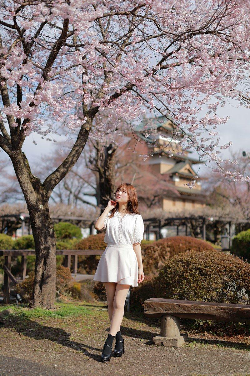 welcome spring…  @YN1982Photo   #桜撮影 #春のポートレート #被写体 pic.twitter.com/q3amUWMF2b