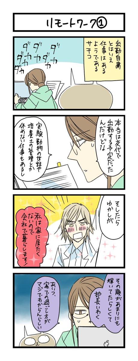 【夜の4コマ部屋】リモートワーク1 / サチコと神ねこ様 第1294回 / wako先生 – Pouch[ポーチ]
