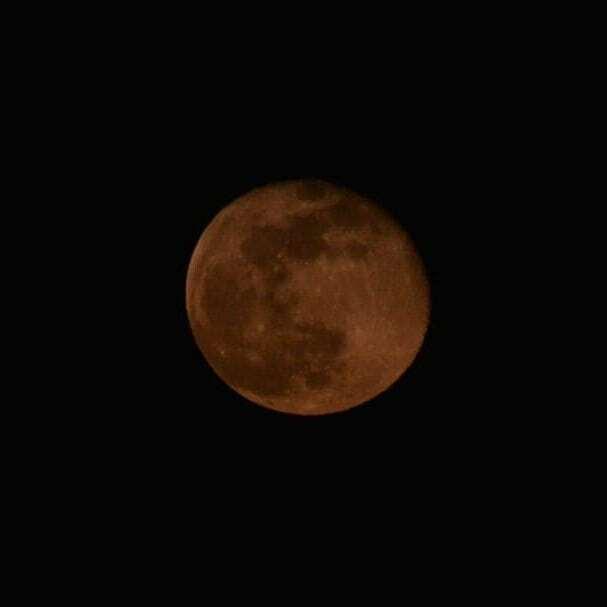 . 昨日見れなかった ピンクムーン 今日はちゃんと撮れた📷 . #moon #イマソラ  #nofilter #月 #ピンクムーン