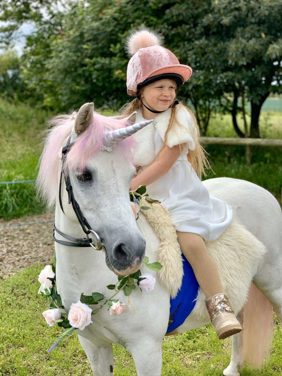 Happy #nationalunicornday 2020! Here's our therapy 'unicorn' Nico & Florrie looking fabulous for last year's Fancy Dress Class at our Summer Show for Horses & Ponies @BBCNewsround  #thursdaymotivation #therapypony #ponylife #eastlothian #rdauk #disabilityinclusionpic.twitter.com/MPAO57ueHn