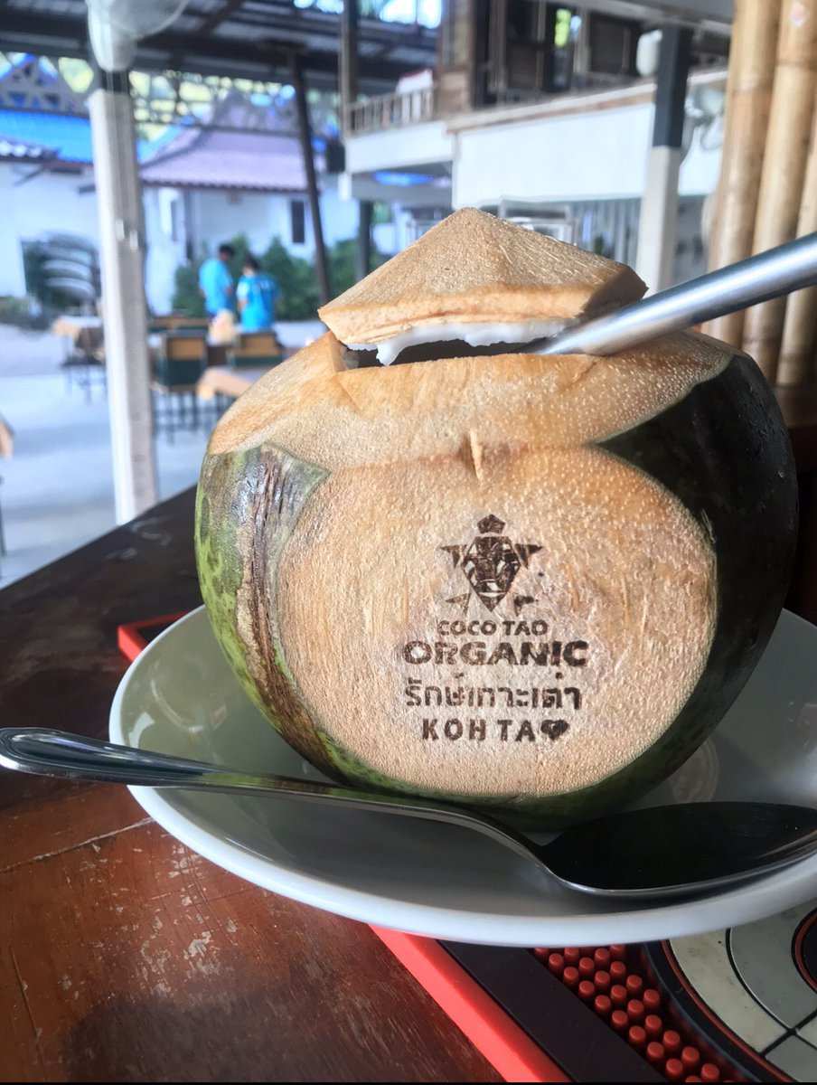 Refreshing coconut to start the day   Goodtimes Resort, Koh Tao, Thailand   #Travel #travelling #healthy #wanderlust #organic #travelpicspic.twitter.com/XPIxfmsGV7