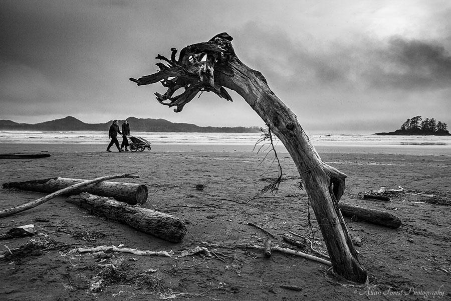 Strolling along a beach in Tofino, BC...  #blackandwhitephotography #blackandwhitephoto #blackandwhite #seascapephotography #seascape #tofino #tofinobc #travelphotography #travel #landscape #sea  @xavierdaniel999