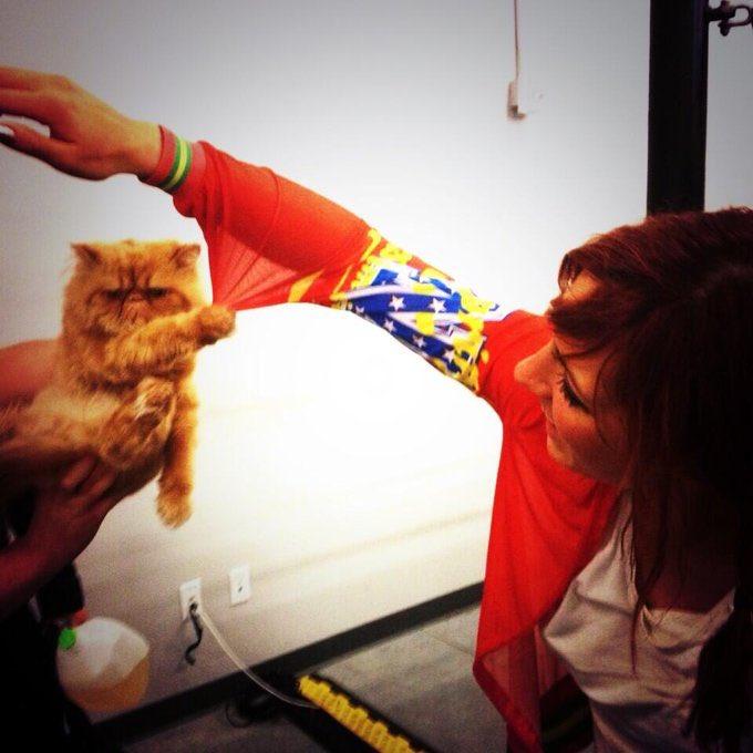 #TBT when #LuchaKitty visited the @WWEPC  happy birthday kitty he loves his tia lucha @SashaBanksWWE #thursdaymorning @wweespanol Cuando kitty estuvo presente  #WWEPC #kingofcats pic.twitter.com/cSMgHmHfQm