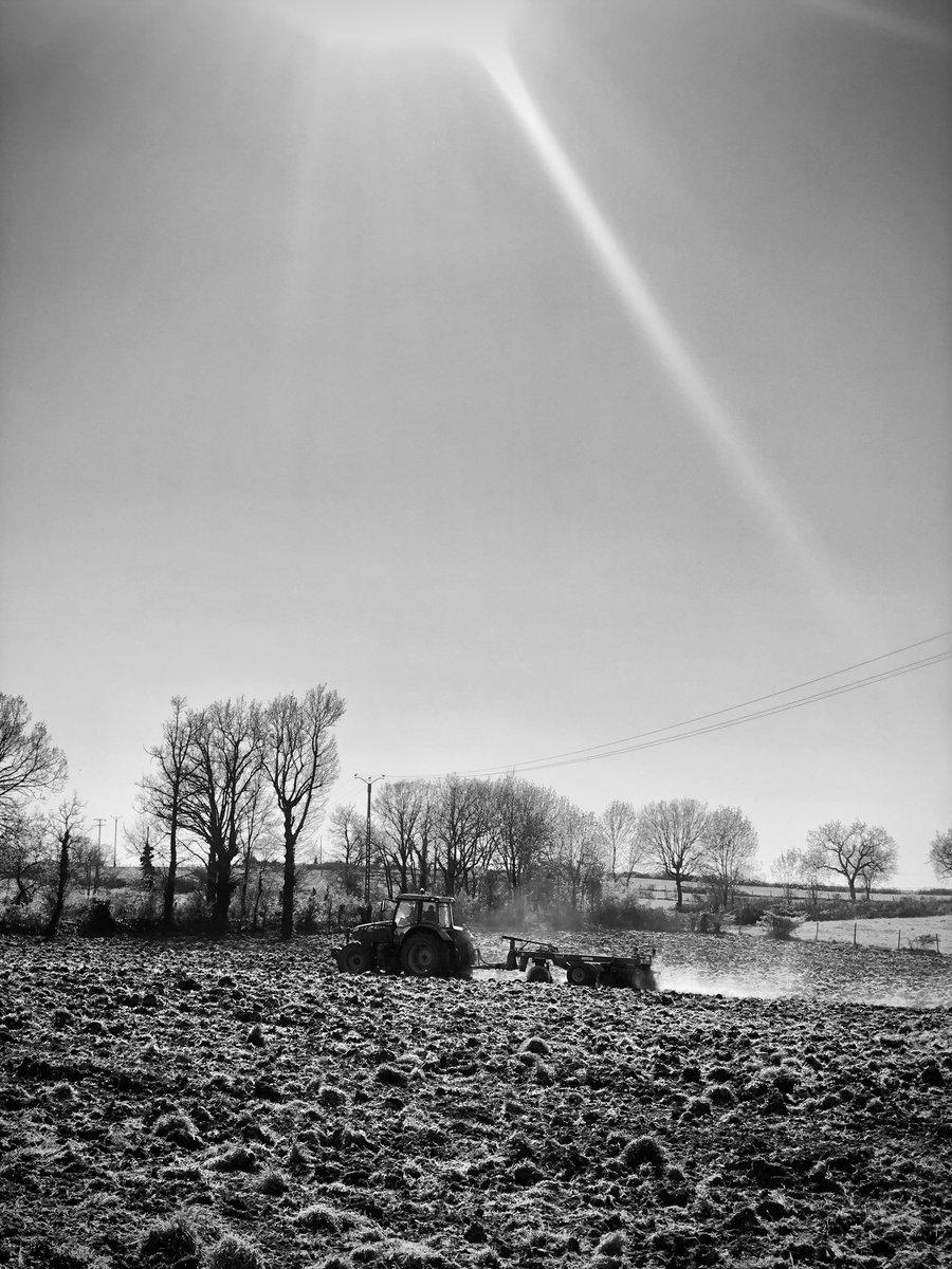 La vie continue ! Nos agriculteurs travaillent pour notre alimentation. Consommons localement et pour Pâques achetons et mangeons des agneaux français #alimentation #agneau #aveyron #agriculture #voisins #paysans