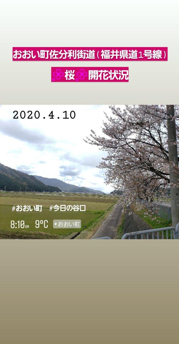 福井 県 若狭 町 天気