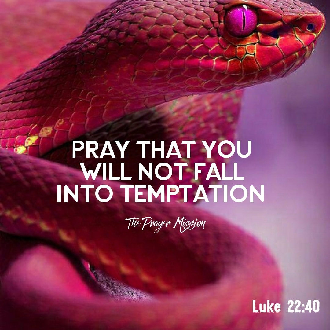 """When Jesus rose from prayer and went back to the disciples, he found them asleep, exhausted from sorrow. """"Why are you sleeping?"""" he asked them. """"Get up and pray so that you will not fall into temptation."""" Luke 22:45-46pic.twitter.com/wzrofflz20"""