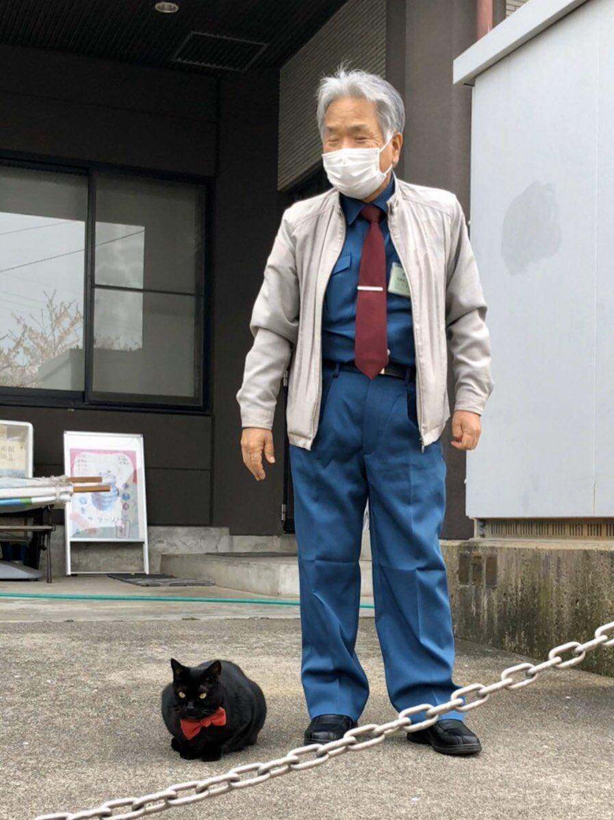 『同伴👮♂️😸accompany 』(2020/ 4/10朝) 🎨今朝は警備員さんと一緒に歩いて来たそうです。#尾道 #尾道市立美術館 #黒猫 #cat
