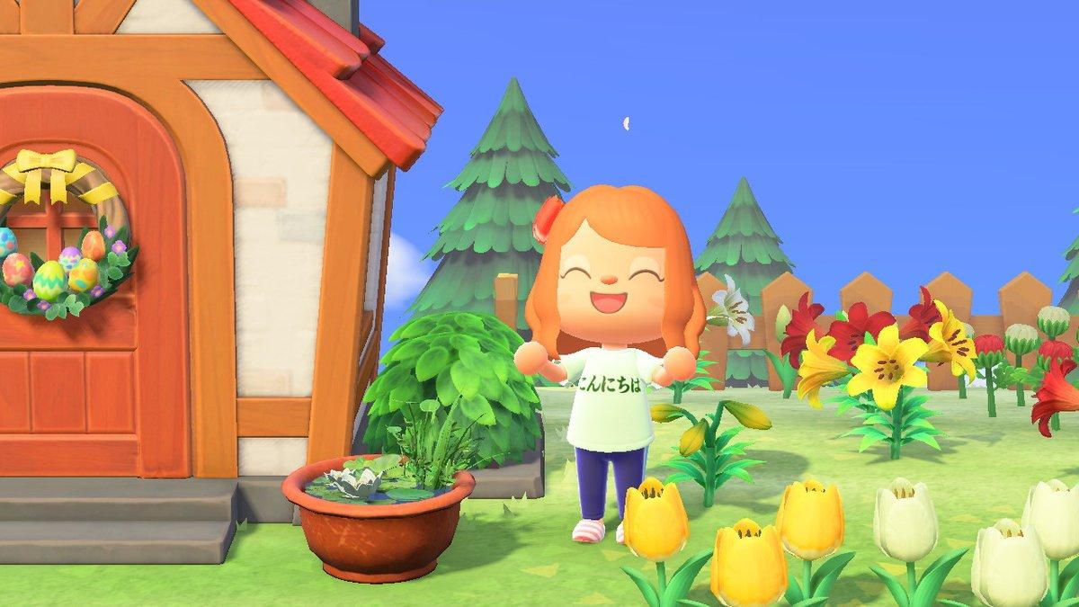 こんにちは #どうぶつの森 #AnimalCrossing #ACNH #NintendoSwitch