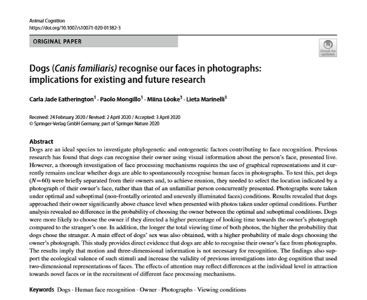 ***NEW PAPER OUT***  Dogs (Canis familiaris) recognise our faces in photographs: implications for existing and future research  https://t.co/5Rm4OOzOCY https://t.co/qm6IyPnGdO