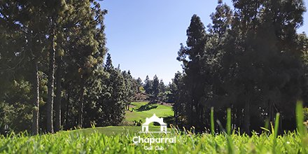 We´ll be back soon! #ChaparralGolfClub will be ready for your game with a rested, top quality golf course !  #ChaparralGolfClub #YoMeQuedoEnCasa #JuntosPodemos #QuédateEnCasa #WeWillBack #StayAtHome #GolfLife #Golfer #GolfSwing #SimplyChaparral #PlayGolfMálagapic.twitter.com/yvV0vyHPyz