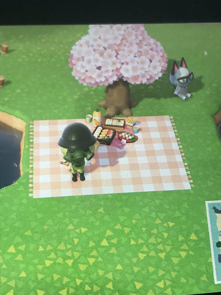 Picnic Carpet Animal Crossing