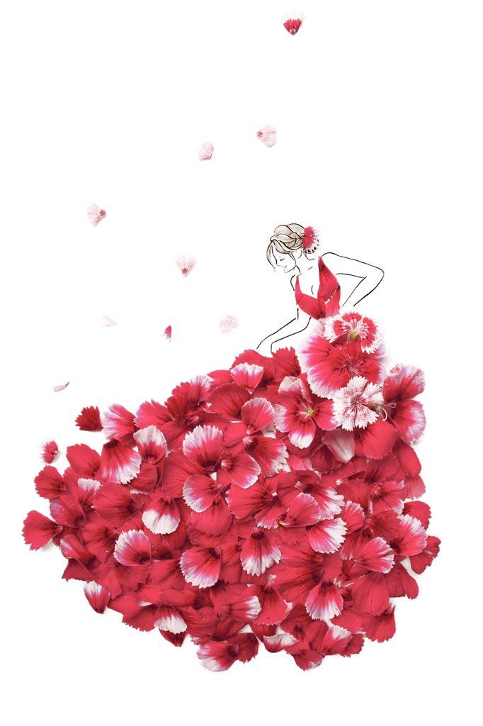 葉菜桜花子 ウェディングドレスできました Hanacohanasaku Twitter