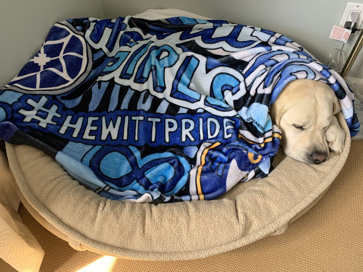And the Gus snores on... #HewittPride ⁦@hewittschool⁩