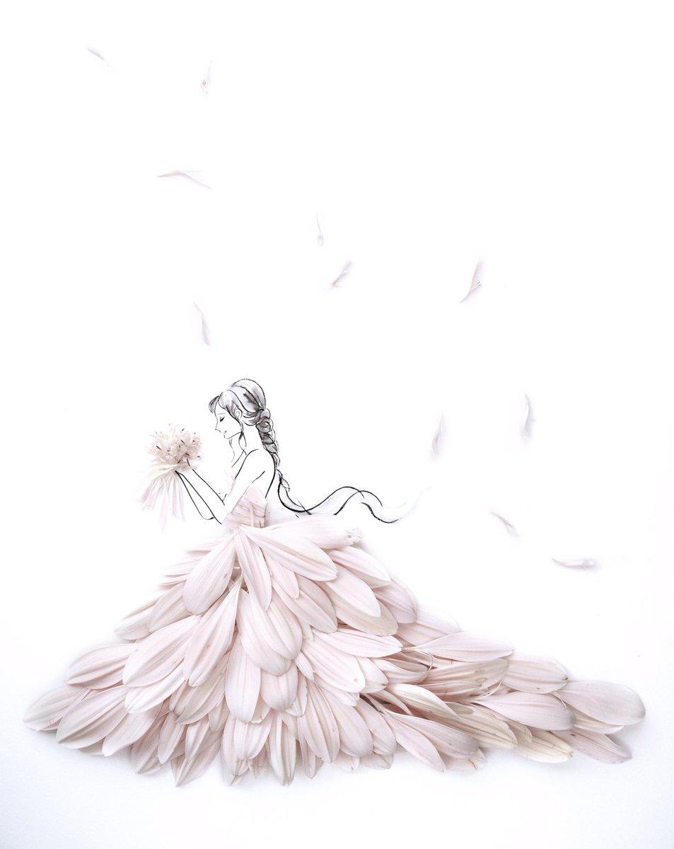 Flowery Fields On Twitter 花言葉ドレス を着用された際には 是非イラストショットを真似してみてくださいね 花 言葉ドレス ガーベラドレス ウエディングドレス ホワイトドレス 花言葉 はな言葉