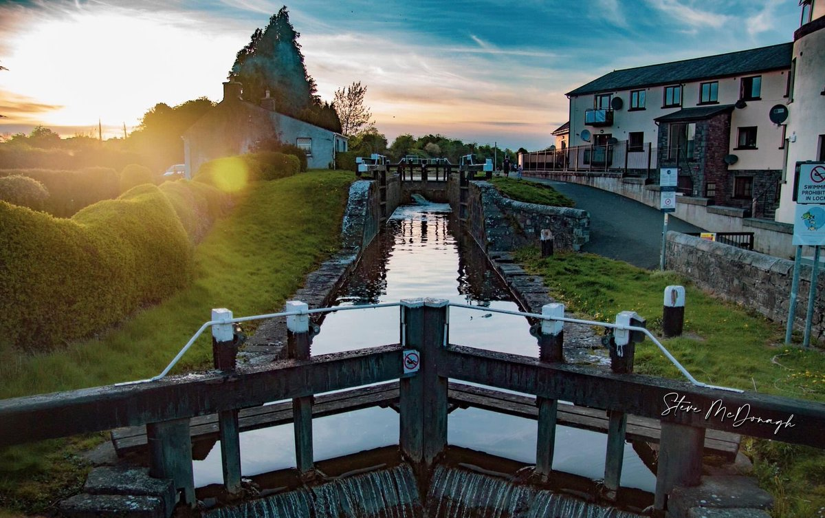 Coarse fishing on the Royal Canal, Ireland | An Irish Anglers