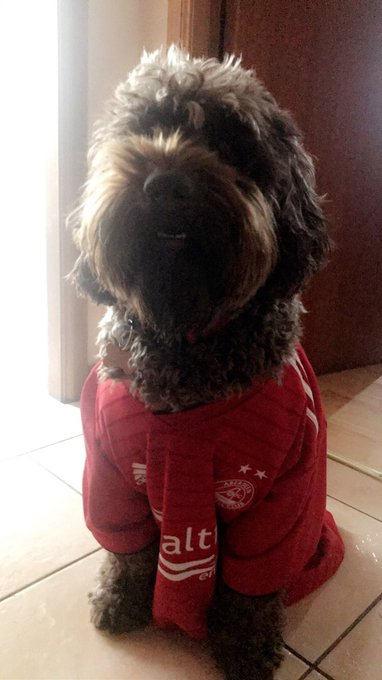 Happy birthday to the main man Fergie. He is all ready for his day out at hampden...