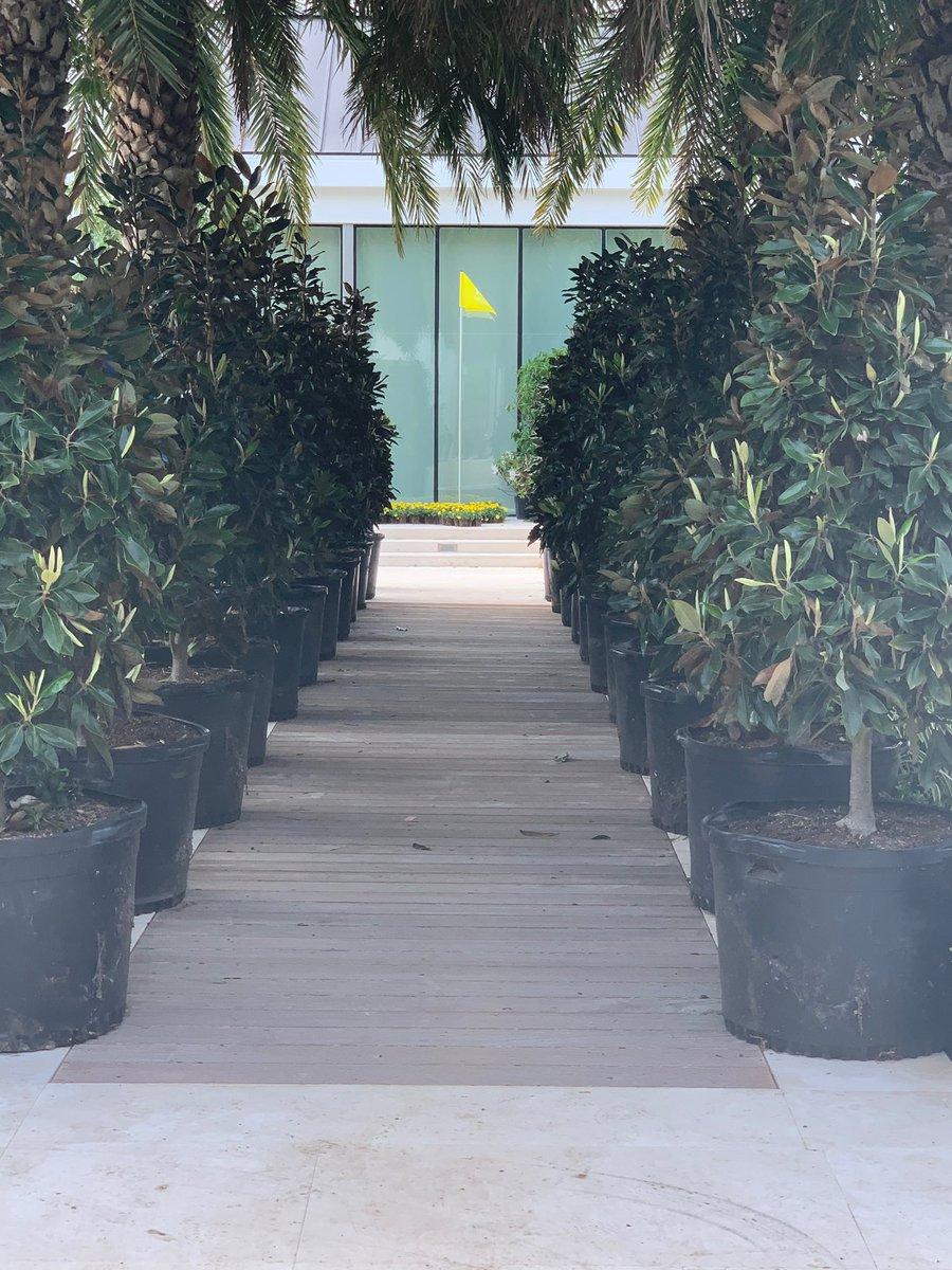 Our Magnolia Lane quarantine style.