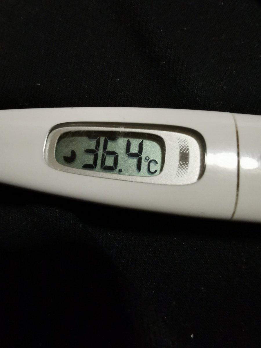 温度 は の 今日