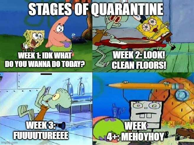 picture Dank Memes Funny Relatable Spongebob Memes Clean squilliam fancyson twitterren idk