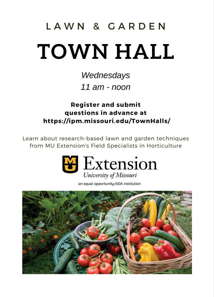 🌱We need farms & gardens for our food & well-being. To bridge the distancing of suspended F2F programming efforts, @MUExtension will be holding virtual town halls.   Wednesdays:  *Home horticulture, 11a *Commercial horticulture, noon *Forages/livestock, 1:30p *Field crops, 2:30p https://t.co/sw5Q3uj9w8