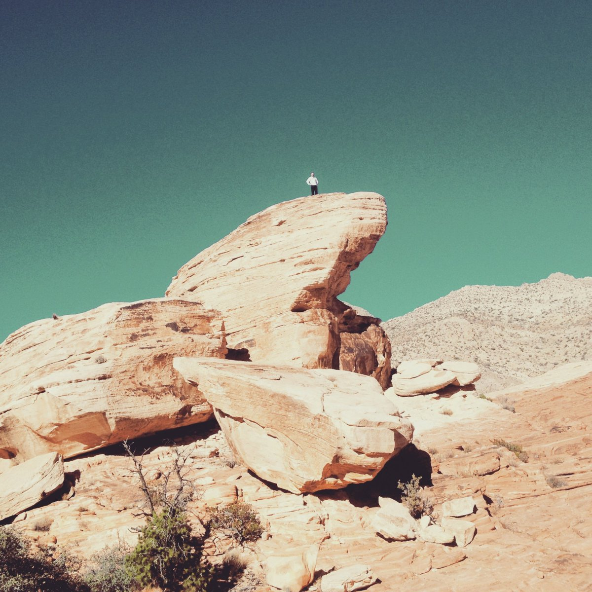 Hiking helps clear the mind and refocus you towards what's important; a form of non-deliberate meditation.  Plus the views usually aren't half bad either :) .  http://www.strrel.com #plasticfree  #reusable #redrockcanyon #calicotanks #vegaslife #strrel #vsconature #meditationpic.twitter.com/TU76YS0HRT