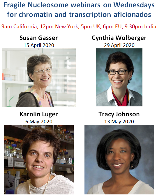 Little did we know in April that #FragileNucleosome seminars will stay for the whole year, attended by thousands of scientists. Don't miss our last seminar in 2020 by Joanna Achinger-Kawecka (@aachinger) and Wendy Bickmore (@wendy_bickmore). Register here: https://t.co/tr5F3e1rvv