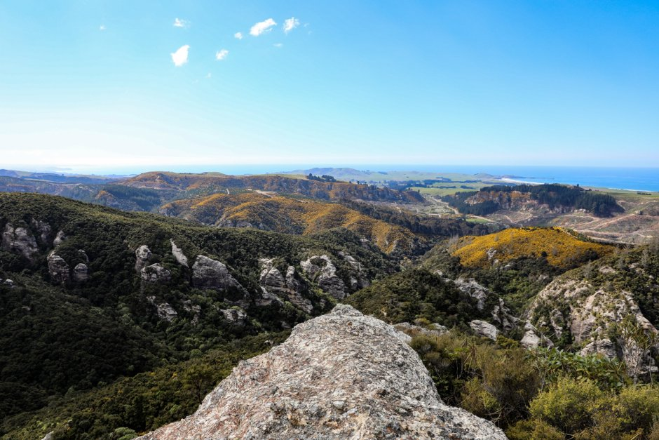 #Geosite 39: Trotters Gorge A great place for shady bush walking while spotting some of our native birds. Listen out for NZ falcon/karearea calling overhead. The caves and cliffs are a greywacke-breccia #conglomerate and were formed after the last ice age 12 - 15,000 years ago. pic.twitter.com/ZEMNIB1QRn