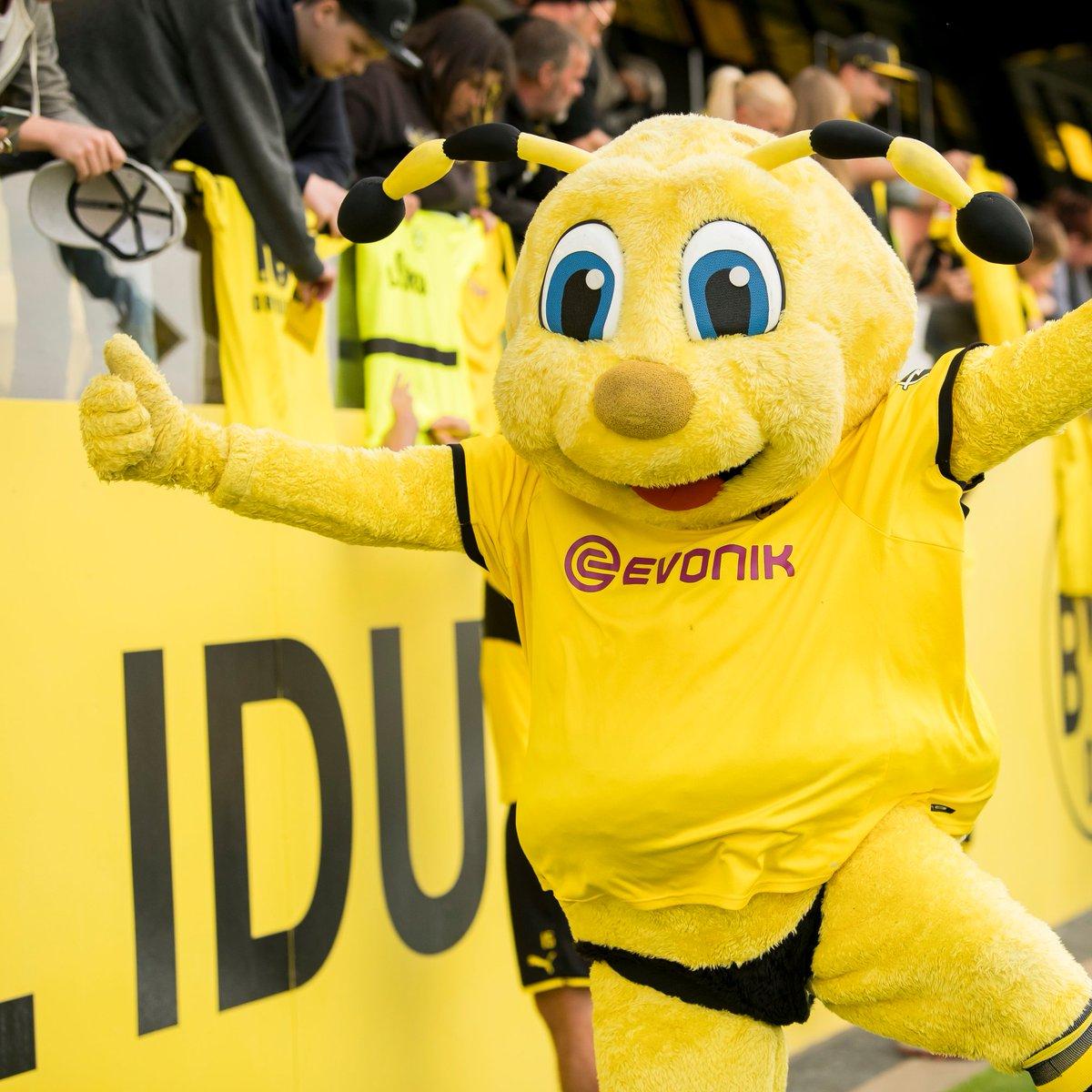 Borussia Dortmund On Twitter Happy 15th Birthday To Everyone S Favorite Mascot Emma